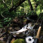 Pesca: Zio Pesce Blog ha provato ……